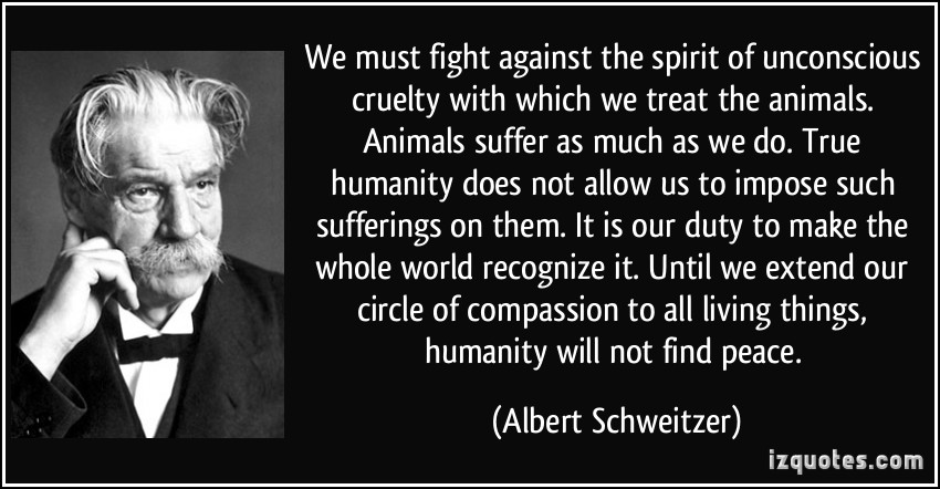 quote-we-must-fight-against-the-spirit-of-unconscious-cruelty-with-which-we-treat-the-animals-animals-albert-schweitzer-291535