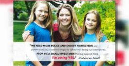 Corrupt Judge Cindy Larsen Hard At Work For Mark Roe